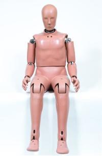Boneco-Masculino-Hibrido-III50th2