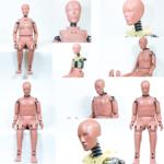 boneco-masc-femi-lateral-e-frontal